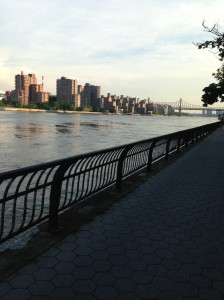 pista de corrida, rio East. Nova York