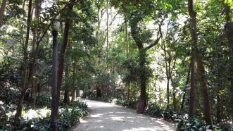 Parque Trianon, São Paulo.
